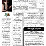 עיתון אלחבר לדוגמא